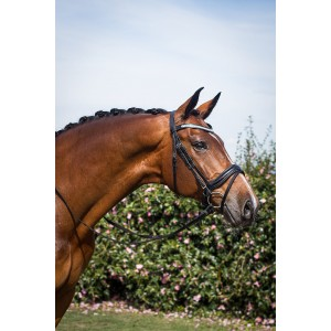 Majesty Snaffle Bridle