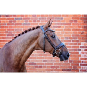 Brown Flat Snaffle Bridle