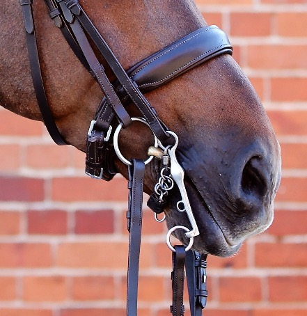 Brown Double Noseband