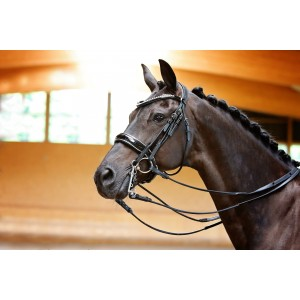 Black Double Bridle