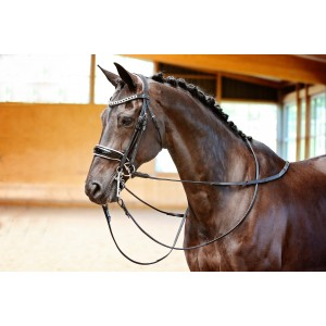 Black & White Double Bridle