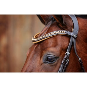 Tan Leather Browband