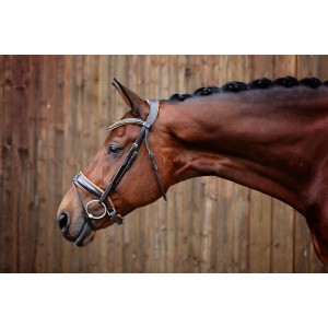 Rolled Brown Leather Bridle