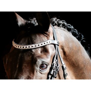 Black & White BrowBand