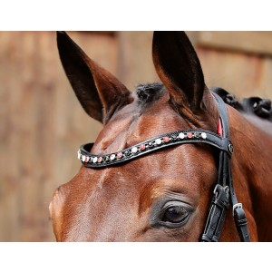 Red BrowBand