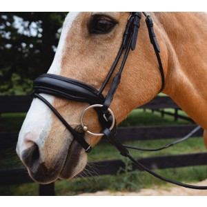 Snaffle Non Patent Bridle