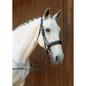 Naked Bridles (JUST ADD BROWBAND)