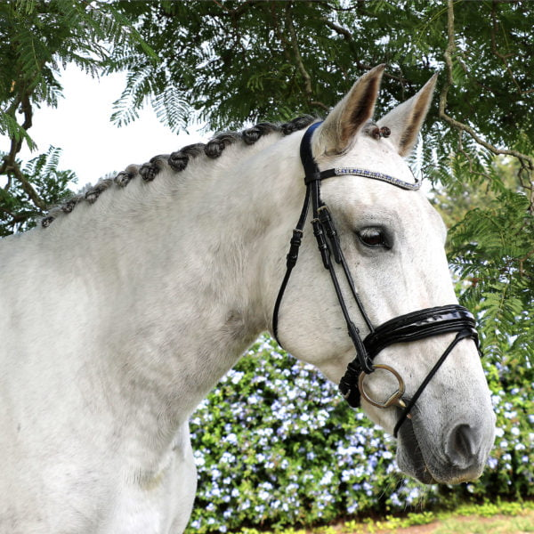 Patent Leather Bridle