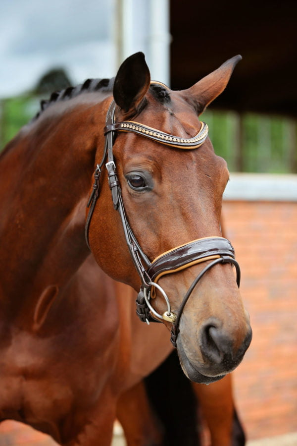 Noble Snaffle Bridle